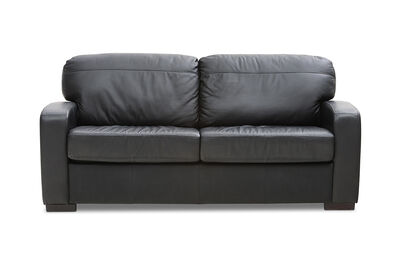 FUTURE - Leather 2 Seater Sofa Bed