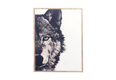 WOLF - Wall Art