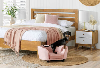 MURPHY - Pink Pet Bed
