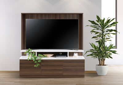 BARRAGE - Entertainment Wall Unit
