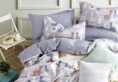 LLAMA DREAMS - Cotton Quilt Cover Set - Single