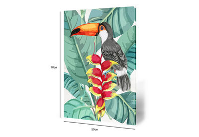 HINCS - Toucan Canvas Wall Art 50x70cm